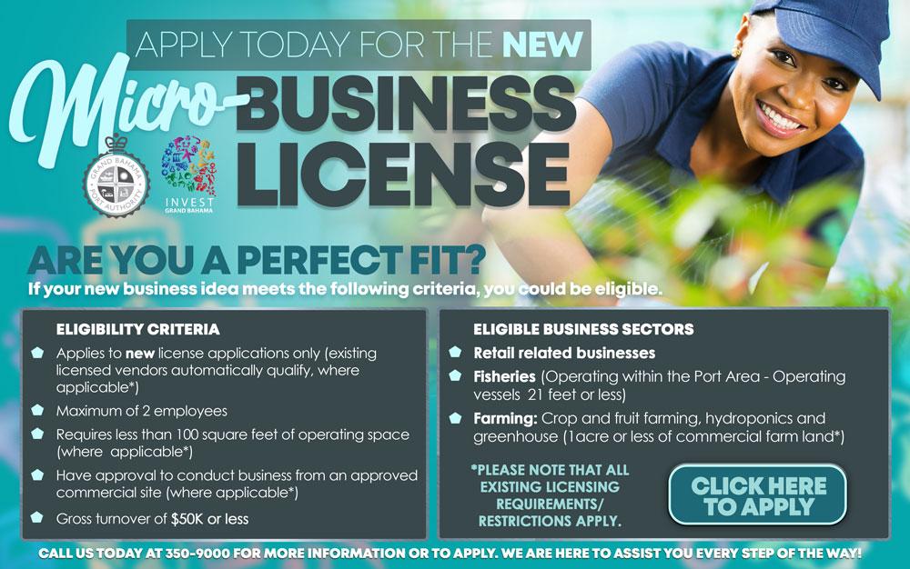 Micro Business License